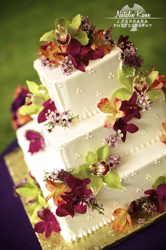 jamesferrara.com, Hudson Valley Wedding Photographer (27)