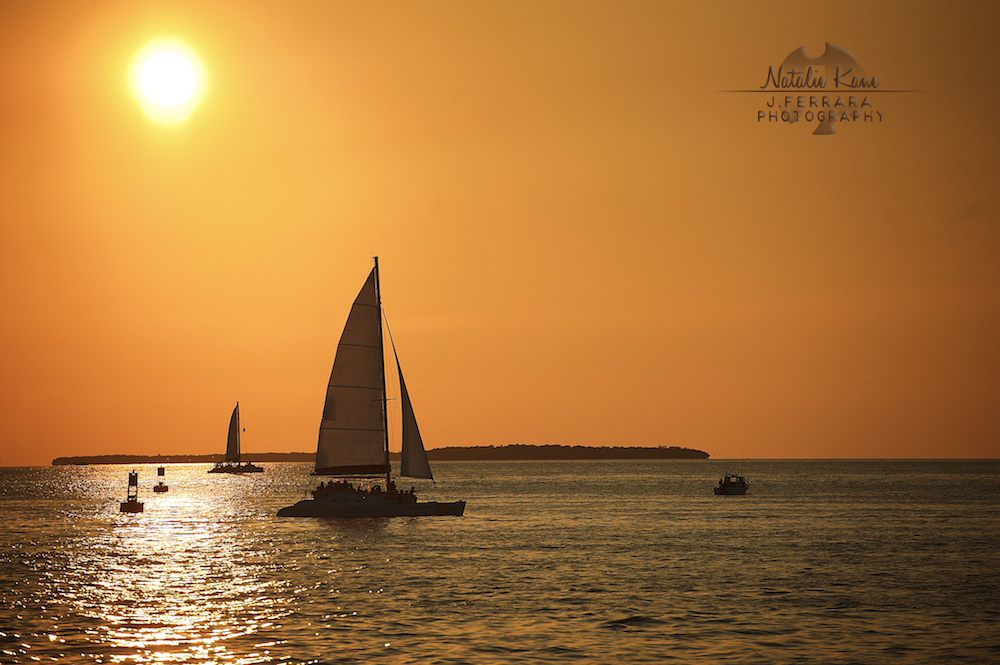 Key West Photography (11)