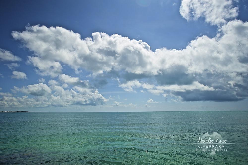 Key West Photography (3)