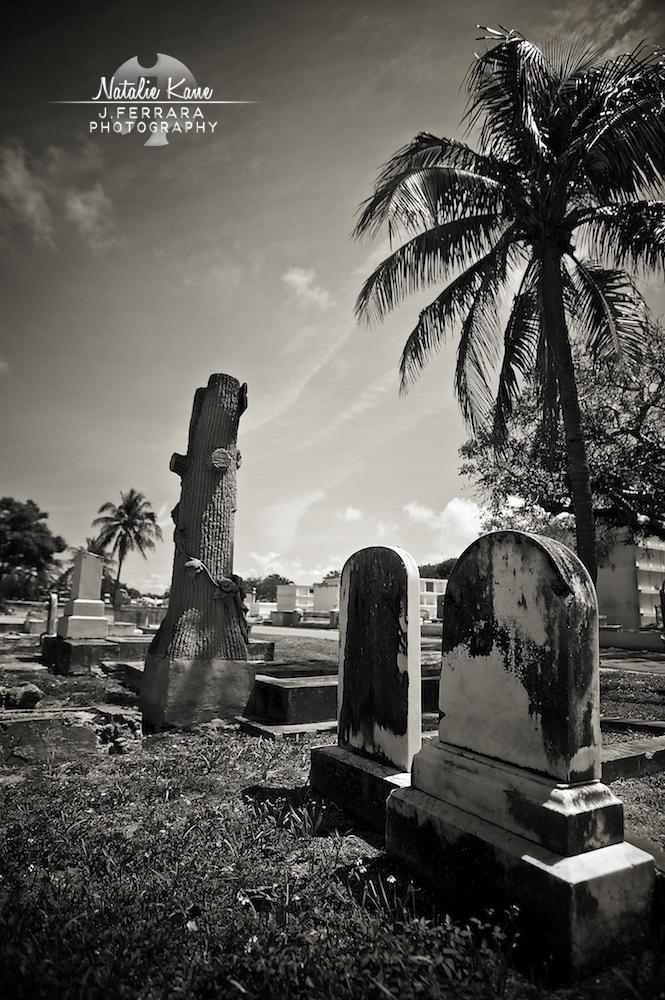 Key West Photography (5)