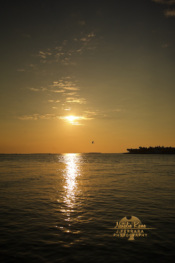 Key West Photography (8)