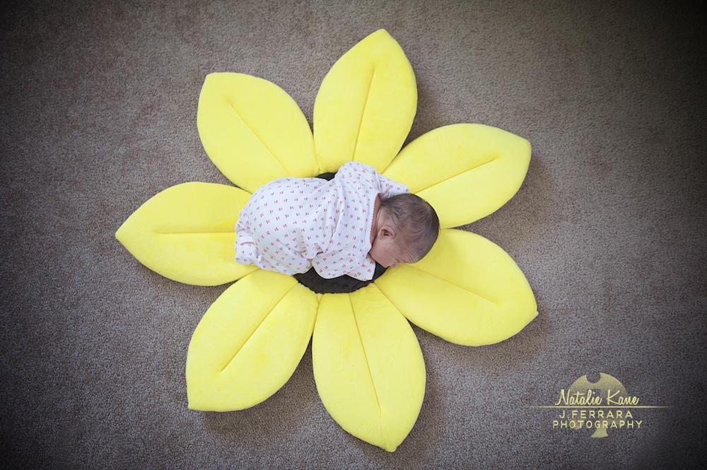 Hudson Valley Baby Photographer (1)