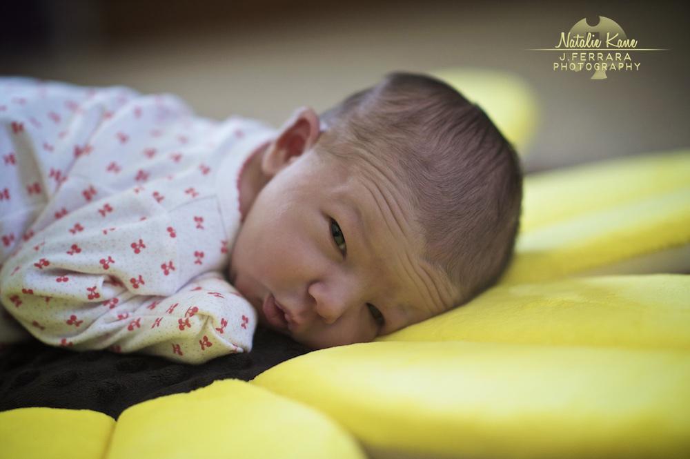 Hudson Valley Baby Photographer (2)