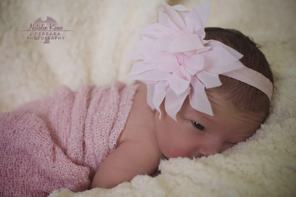 Hudson Valley Baby Photographer (7)