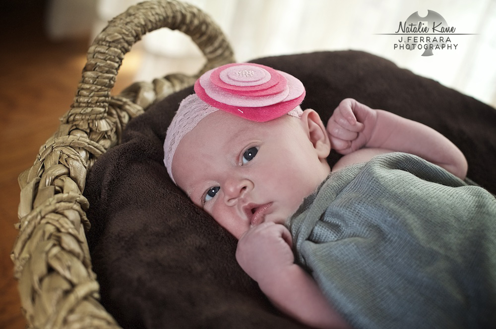 Hudson Valley Baby Photographer (4)