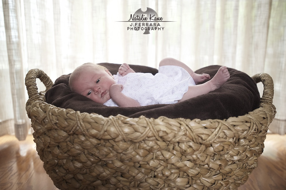 Hudson Valley Baby Photographer