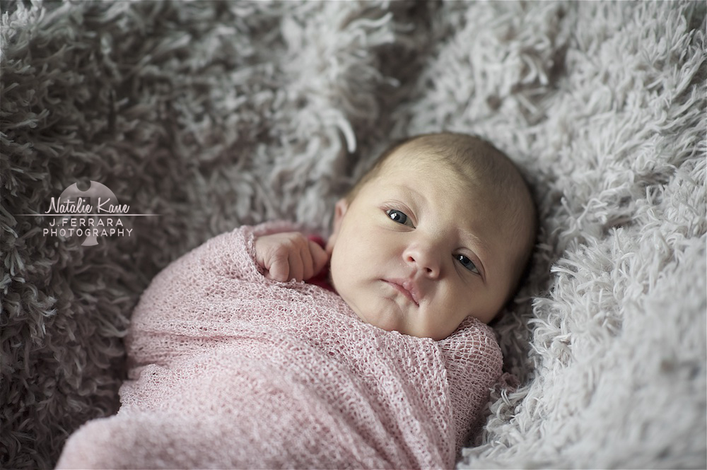 Hudson Valley Baby Photographer (1)
